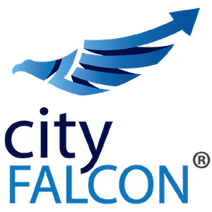 CITY FALCON LIMITED || Accounts || Seedrs || Crowdfunding Tracker || Companies House