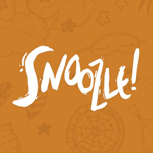 SNOOZLE LIMITED || Accounts || Seedrs || Crowdfunding Tracker || Companies House